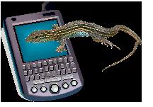 Gero-informatics logo